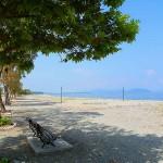 Πευκί Βόρειας Εύβοιας παραλία.