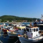 Πευκί Βόρεια Εύβοια λιμάνι.