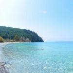 Παραλία Κουτσούμπρι Αγριοβότανο