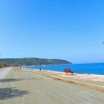 Βασιλικά Παραλία Ψαροπούλι