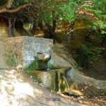 Κοκκινομηλιά Η Παλιά Βρύση Μέσα Στο Δάσος.