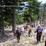 Δραστηριότητες στην Βόρεια Εύβοια: πεζοπορία, φιλοδασική ένωση Αγίας Άννας.