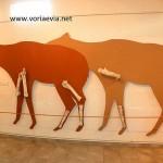 Μουσείο Παλαιοντολογικών Ευρημάτων Κερασιάς